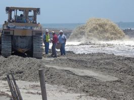 Isle of Palms Beach Restoration