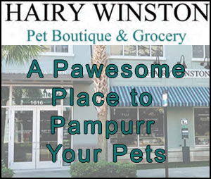 Pamper your pets at Hairy Winston Pet Boutique and Grocery!